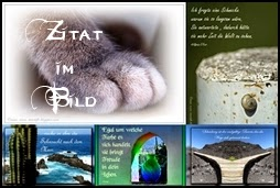 Blog Projekt Zitat im Bild